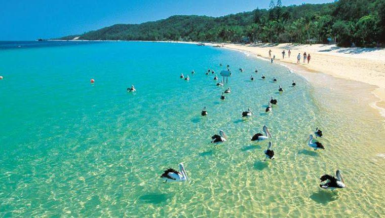 Deals-I-Love-Moreton-Bay-Cruise-slider1